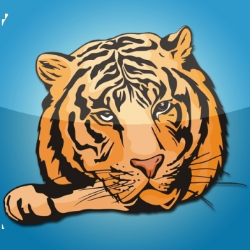 About Animals: Tigers