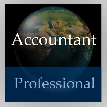 Accountant Handbook (Professional Edition)
