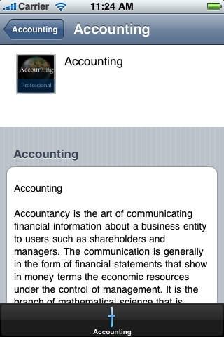 Accounting Handbook (Professional Edition)