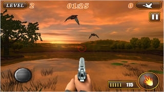 Ace Duck Hunter Lite