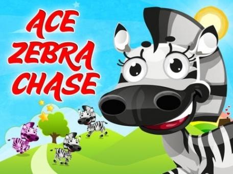 Ace Zebra Chase  Jump High to Reach Blue Sky