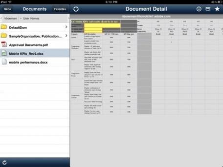 Adobe® Digital Enterprise Platform – Mobile