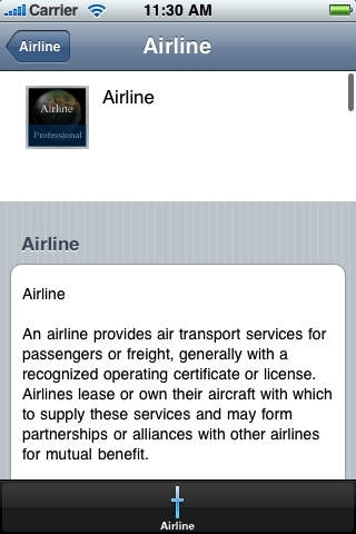 Airline Handbook (Professional Edition)
