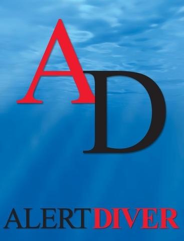 Alert Diver