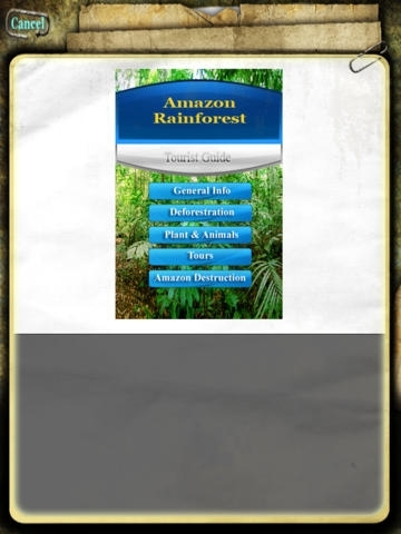 Amazon Rain Forest - South America