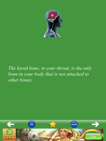 Anatomy Body Facts