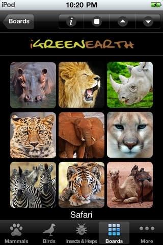 Animal Chatter Pro