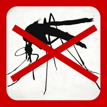 Anti Insects