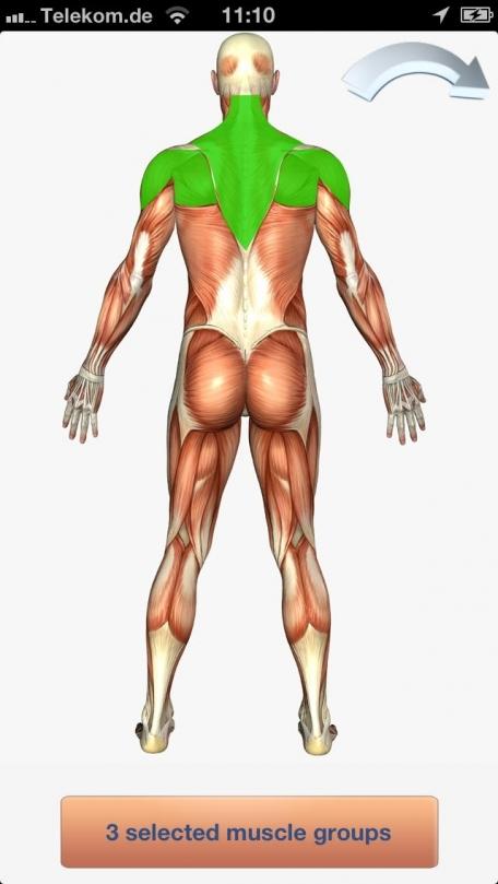 100+ Fitness Exercises