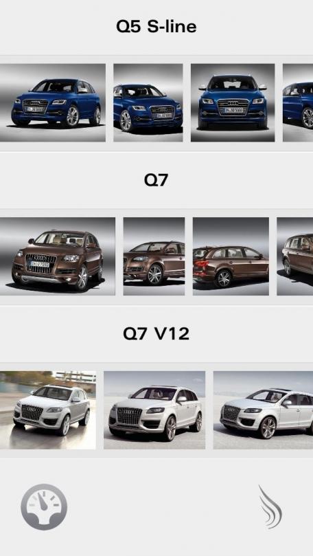 Audi Q Collection