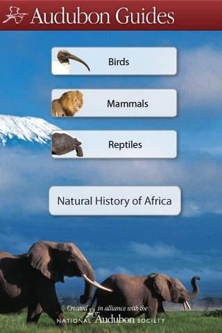 Audubon African Wildlife