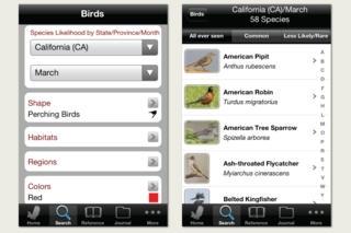 Audubon Birds California – A Field Guide to the Birds of California