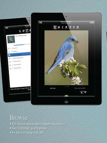 Audubon Birds Pro