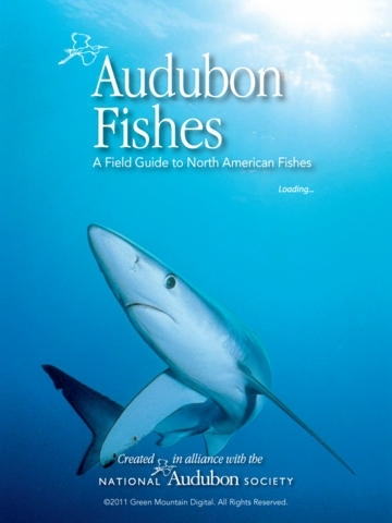 Audubon Fishes - A Field Guide to North American Fishes