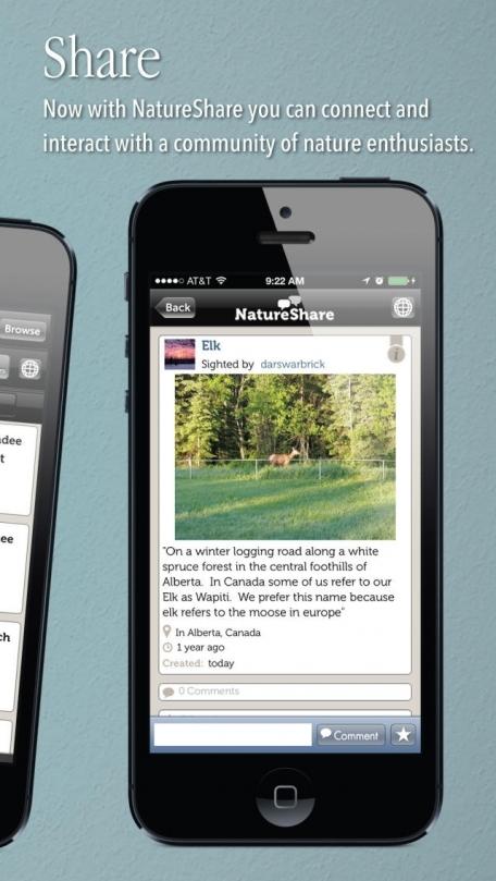 Audubon Mammals - A Field Guide to North American Mammals