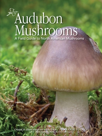 Audubon Mushrooms – A Field Guide to North American Mushrooms