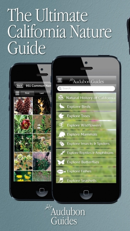 Audubon Nature California – The Ultimate California Nature Guide