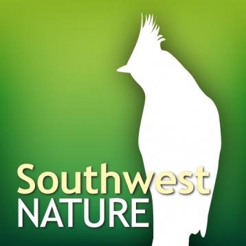 Audubon Nature Desert Southwest