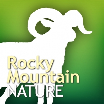 Audubon Nature Rocky Mountains - The Ultimate Rocky Mountain Nature Guide