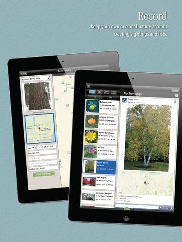 Audubon Trees