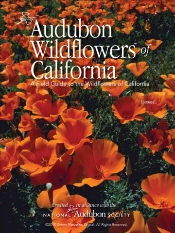 Audubon Wildflowers California – A Field Guide to the Wildflowers of California