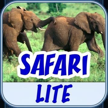 BabyFirst\'s Safari Scrapbook Lite