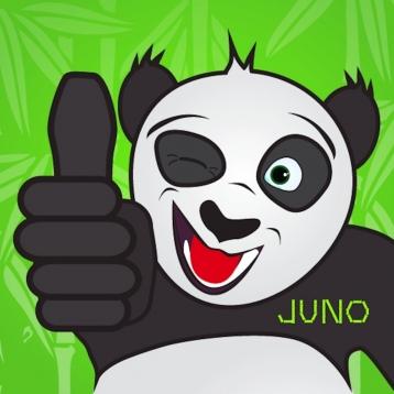 Bamboo Wallet