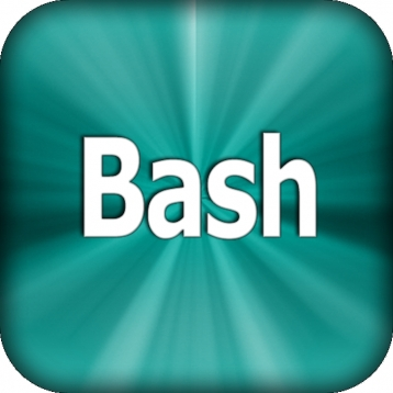 Bash Programming Language