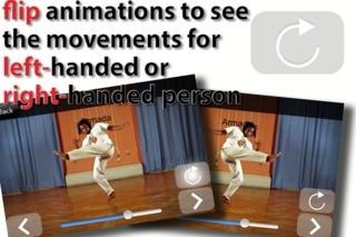 Beautiful Capoeira: Mestre Xuxo Edition