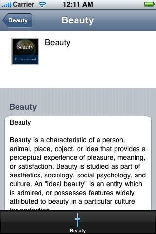 Beauty Handbook (Professional Edition)