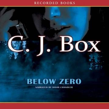 Below Zero (Audiobook)