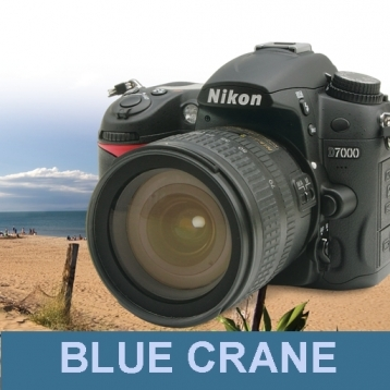 Blue Crane Digital\'s Introduction to the Nikon D7000 : Basic Controls