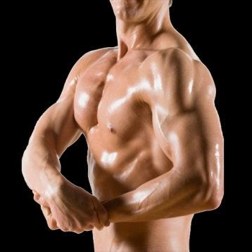 Body Building - Complete Guide