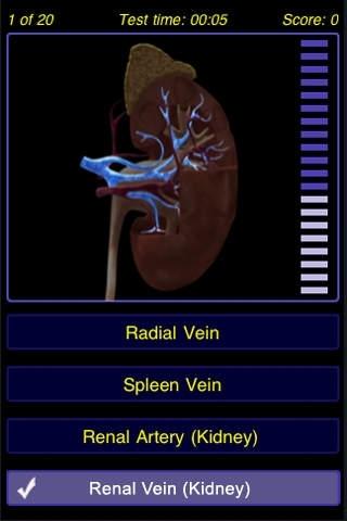Body Systems - Anatomy Quiz