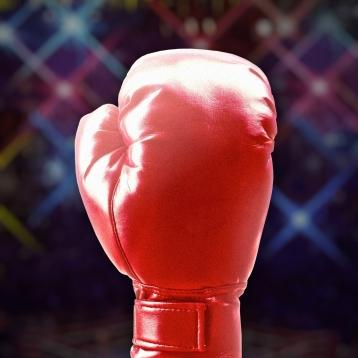 Boxing & MMA Scorecard