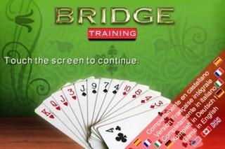 BRIDGE Training
