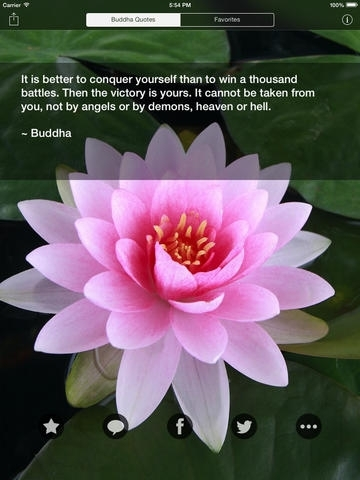Buddha quotes best daily buddhism quote wisdom for every buddha quotes best daily buddhism quote wisdom for every buddhist mightylinksfo Choice Image