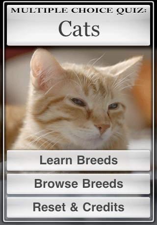 Cats™