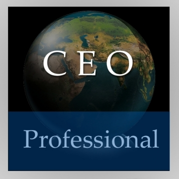 CEO Handbook (Professional Edition)
