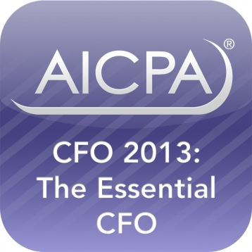 CFO 2013: The Essential CFO