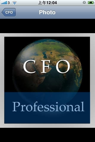 CFO Handbook (Professional Edition)