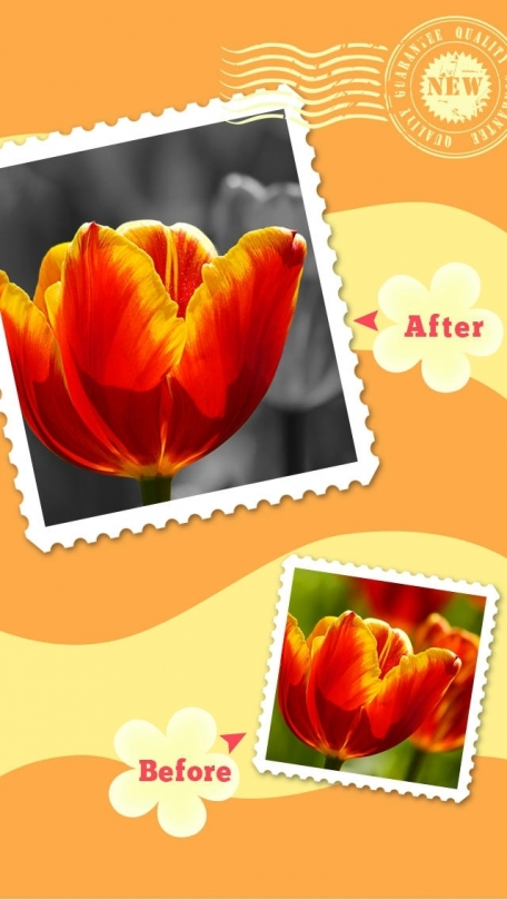 Color Magic HD Free - ReColor & Splurge Photo Effect FX For Omegle,PS,MSN