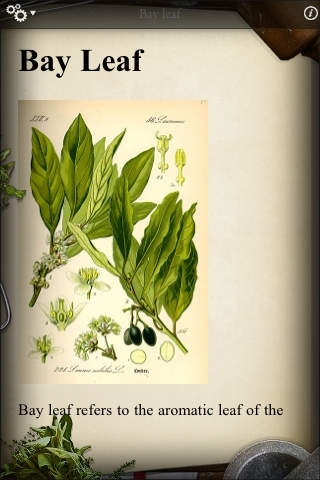 Culinary Herb Guide