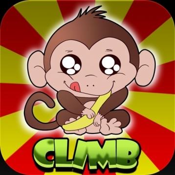 Curious Monkey Climb