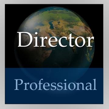 Director Handbook (Professional Edition)