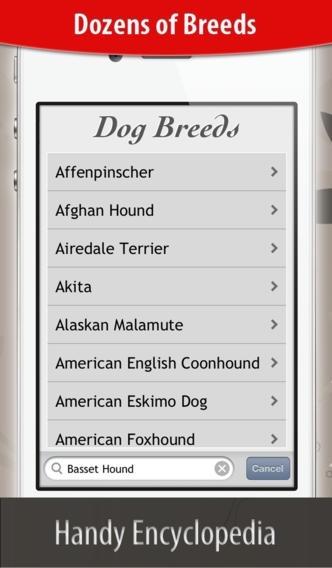 Dog Breeds HD+