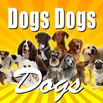 Dog Super Animal Guide