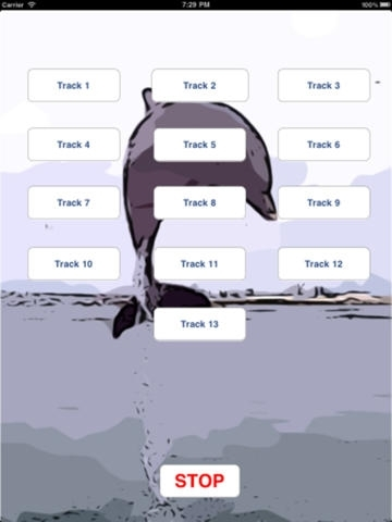 Dolphin' 's - Swimming and Jumping to Your Phone or Tablet