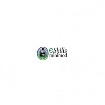 e Skills Minimod Fractions