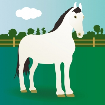 100 Horses - Ad-free Picture Book for Kids